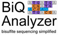 BiQ Analyzer Logo